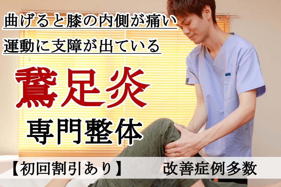 なぜ?他院では改善しなかった鵞足炎が当院の施術で改善するのか?